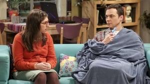The Big Bang Theory: 10×20
