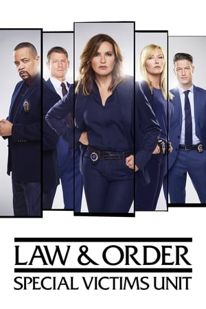 Law & Order: Special Victims Unit - Season 12 Episode 23