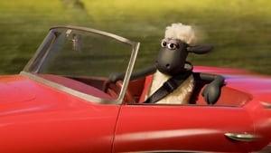 Shaun das Schaf: 4×4