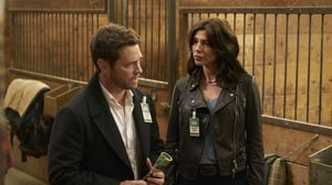 Private Eyes: 1×3