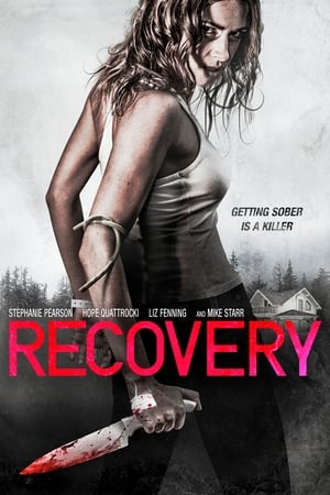 Baixar Recovery (2019) Dublado via Torrent