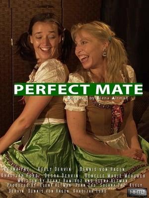 Perfect Mate (2020)