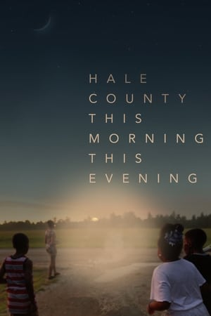Hale County This Morning, This Evening (2018)