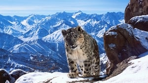Planet Earth II 1×2