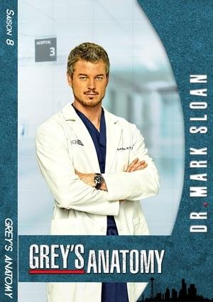 Grey's Anatomy Saison 9 Épisode 8