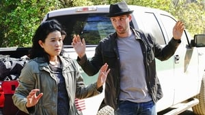 Scorpion Season 4 Episode 10