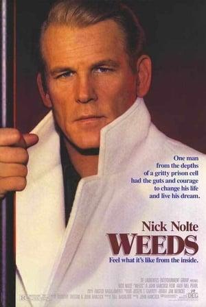 Weeds-Mark Rolston