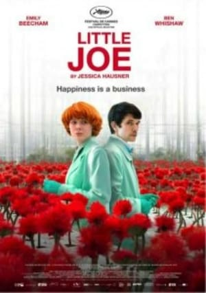 Watch Little Joe online