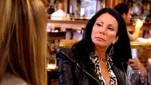 The Real Housewives of New Jersey: 8×4