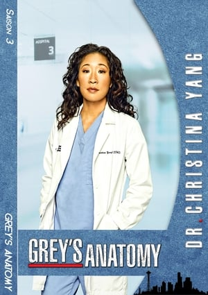 Grey's Anatomy Saison 4 Épisode 3