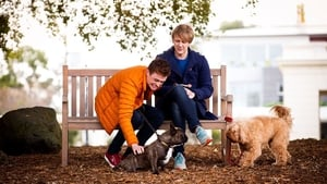 Please Like Me: Season 4 Episode 3