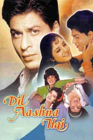 Dil Aashna Hai Heart Knows 1992 Full Movie Subtitle Indonesia