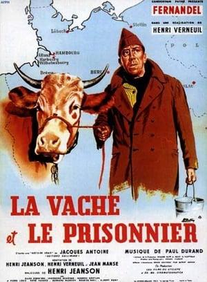 Filmcover Ich und die Kuh