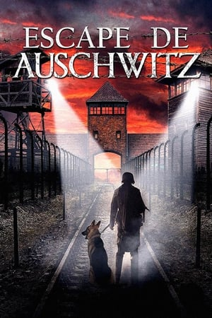 Escape de Auschwitz (2020)