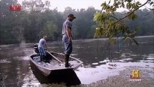 Swamp People: 3×17