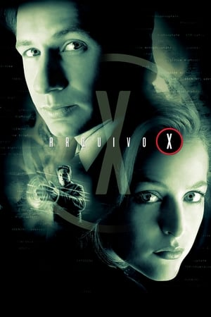 Arquivo X 1ª,2ª,3ª,4ª,5ª,6ª,7ª,8ª,9ª Temporada (1993–2002) DVDRip Dual Áudio Dublado Torrent Download