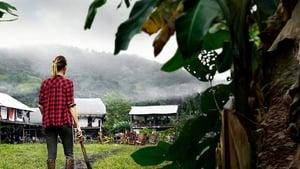 Jungletown
