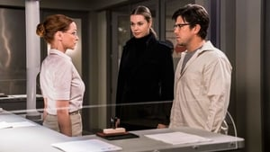 Ver Episodio 12 The Librarians 4x8 ver episodio online