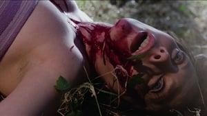 Trauma (1978)