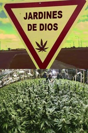 Jardines de Dios