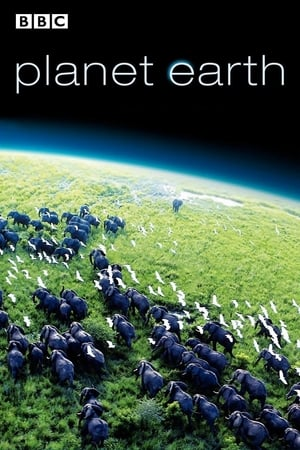 Play Planet Earth