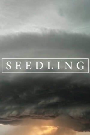 Seedling-Niamh Algar