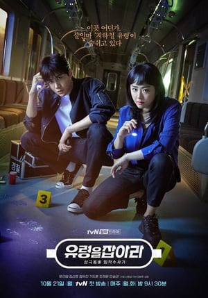 Catch the Ghost (2019) Subtitle Indonesia