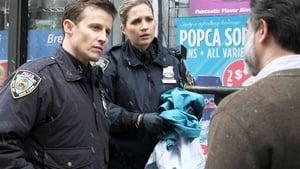 Blue Bloods (Familia de policías): 8×21