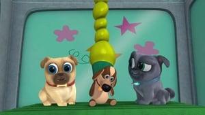 Puppy Dog Pals Season 1 Episode 5