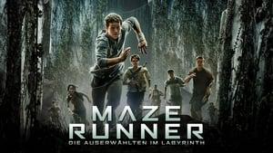 poster The Maze Runner
