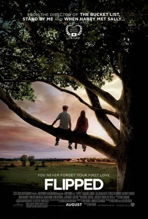 Flipped (2010) is one of the best movies like Rushmore (1998)