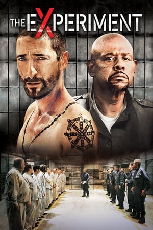 The Experiment (2010) is one of the best movies like Lion (2016)