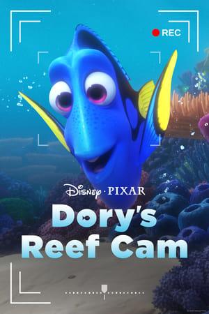 Dory's Reef Cam