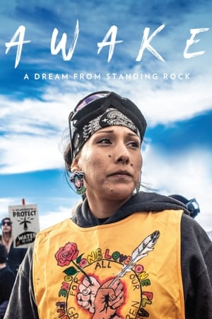 Film cover of Awake: A Dream from Standing Rock