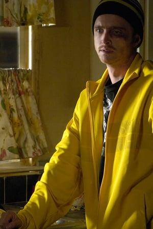 Breaking Bad 1x3 (...Y la bolsa en el río) Online