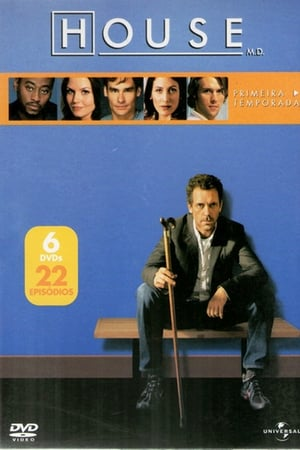 Baixar Serie Dr. House 1ª Temporada Dublado via Torrent