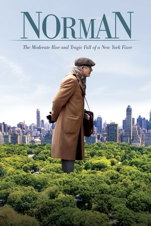 Norman The Moderate Rise and Tragic Fall of a New York Fixer movie poster