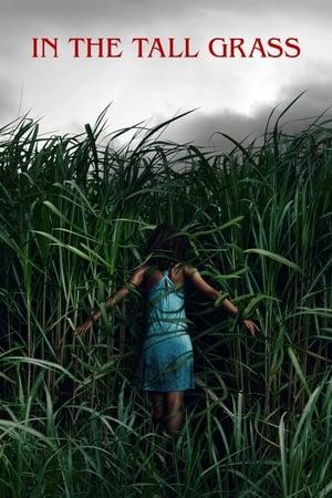 მაღალ ბალახში In the Tall Grass