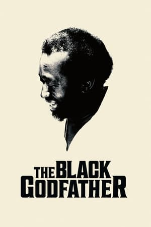 Assistir O Pai da Black Music online