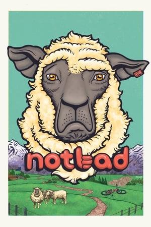 NotBad (2013)