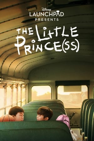 The Little Prince(ss) poster