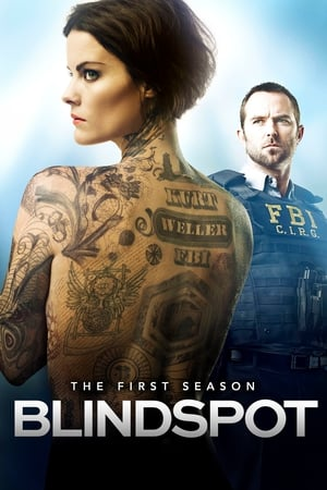 Baixar Serie Blindspot 1ª Temporada Completa Dublado Via torrent