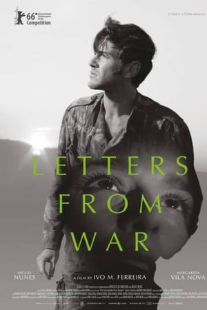 Letters from War 123movies