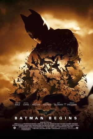 Batman Begins ()