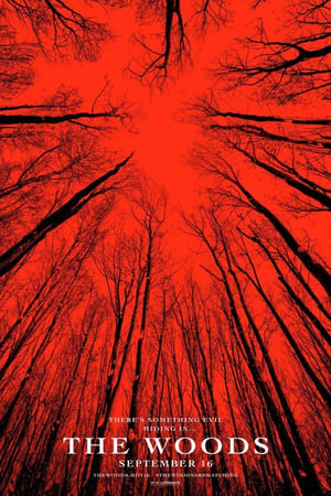 The Woods (El Bosque) Blair Witch