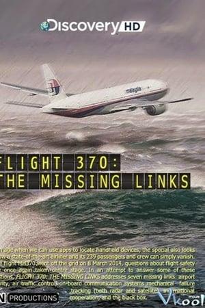 Flight 370: The Missing Links