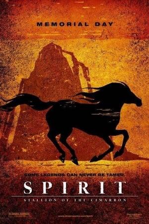 Spirit Collection