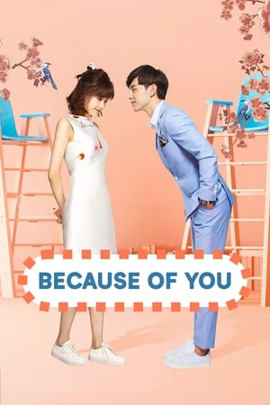 Because-of-You-(2017)