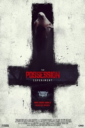Assistir The Possession Experiment online
