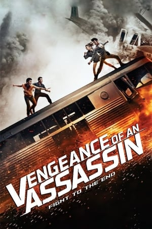 Vengeance-of-an-Assassin-(2014)